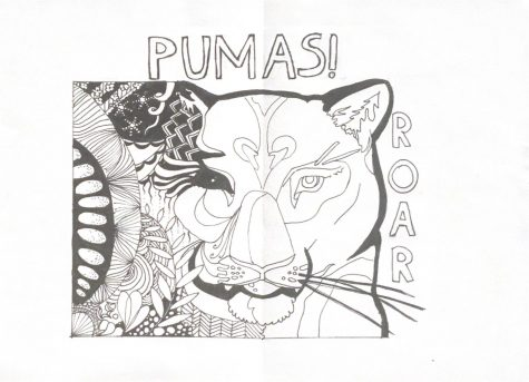 PCS Puma