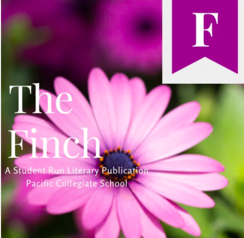 Finch Publishes New Issue